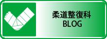 柔道整復科ブログ